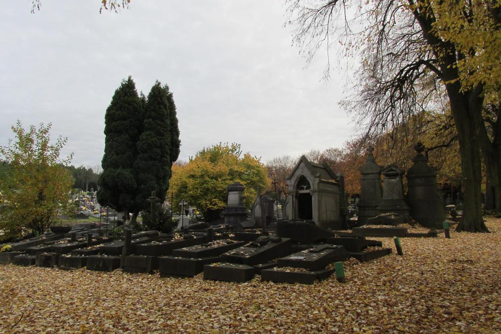 Information       graveyard Robermont Liege    Ru by AzurylipfesStock