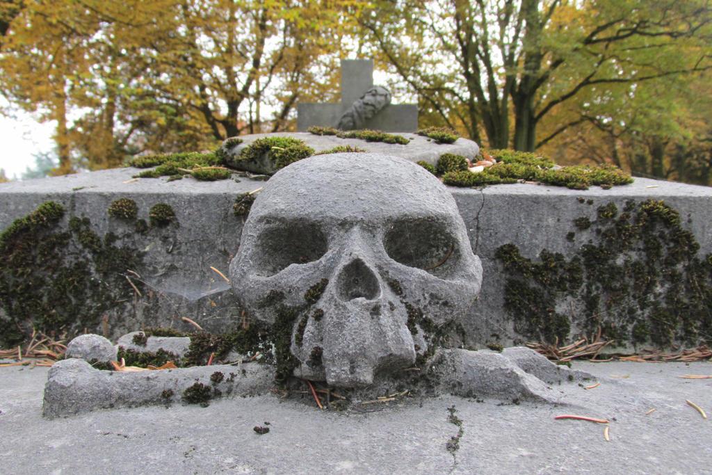 azurylipfesStock2016-Liege- Graveyard RobermontJPG by AzurylipfesStock
