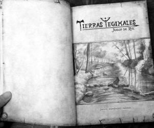 Tierras Yegimales: El juego de rol - book (2) by Celtilia