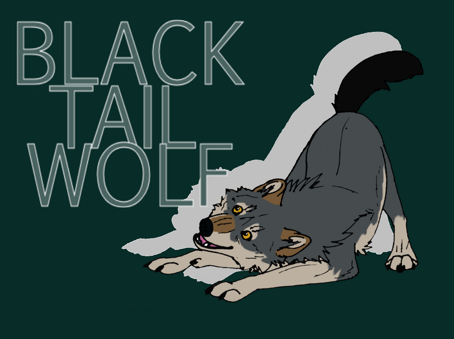 BlackTailwolf's Profile Picture