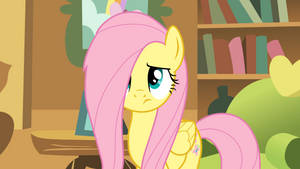 Sleep-over at Fluttershy's Cottage!