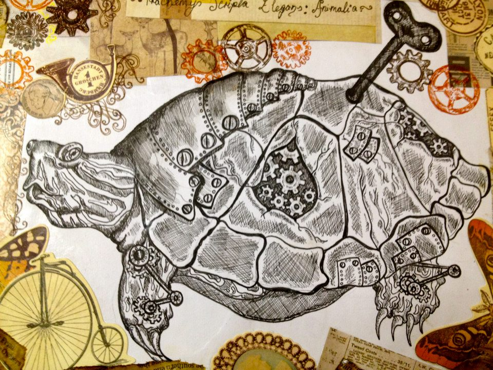 Nature VS Nurture: Tortoise close up by Malice-InWonderland