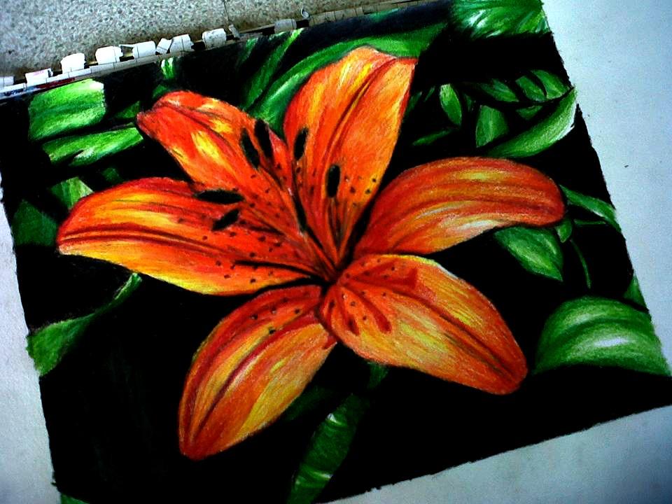 Flower -Art project. by Laurenthebumblebee