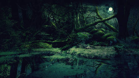 forest background by Vashar23