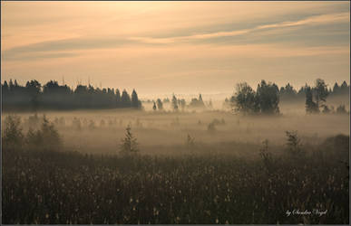 Early morning by DerDunkleEngel