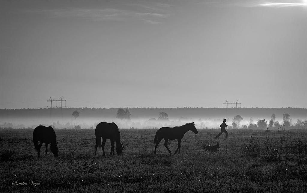September morning by DerDunkleEngel