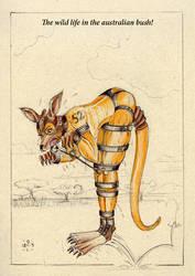 Kangaroo-1 by O-M-L