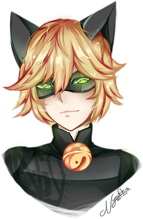 Chat Noir by Nyesth on DeviantArt