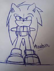 WIP Sonic 2021