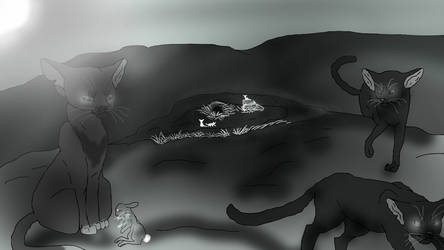A Day in WindClan (Contest Entry) by TheRealBramblefire