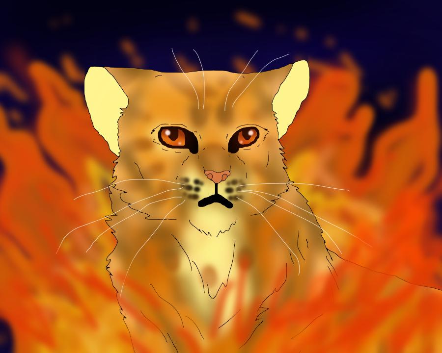 Lionblaze by TheRealBramblefire