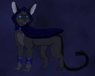 DND Warriors: Rogue Crowfeather by TheRealBramblefire