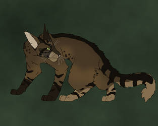 Mudclaw by TheRealBramblefire