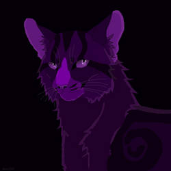Purple Boi
