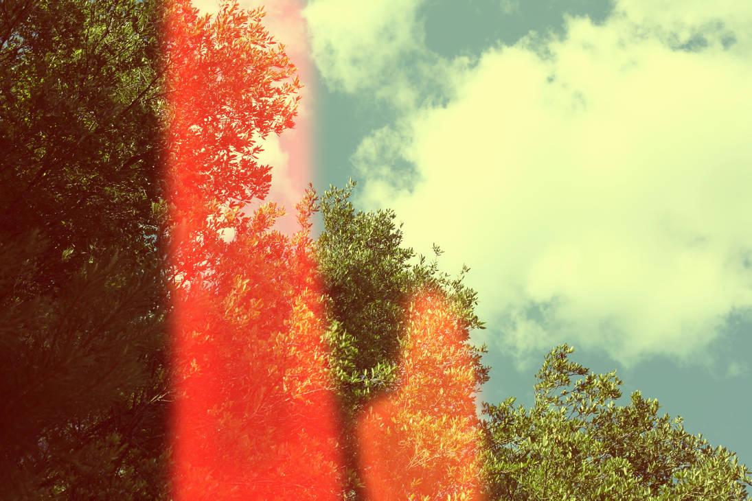 Summer Skies by awkwardUneecorn