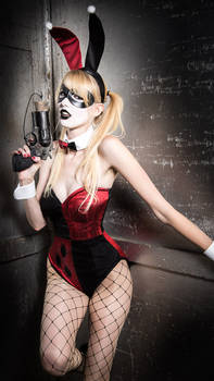Bunny Suit Harley