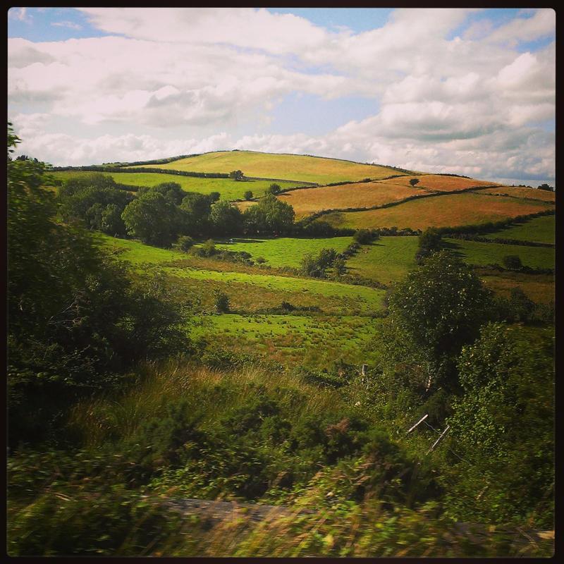 Greener Pastures II by aare