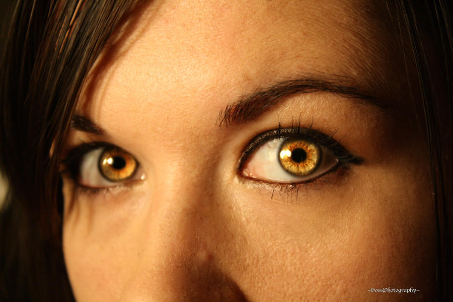 Yellow Eyes By Claytons Girl 4 Ever On Deviantart