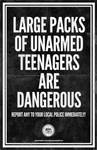 Teenagers are Dangerous