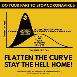 Flatten the Curve, Stay the Hell Home!