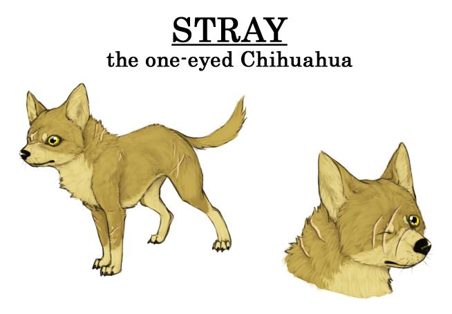 Stray the one eyed Chihuahua by RamzaWolf on DeviantArt