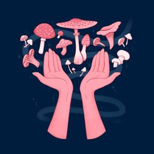 Midnightober 7: Mushroom Collection