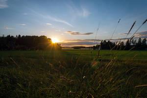 Sunset over fields 2