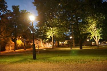 Lit park at night by photodeus
