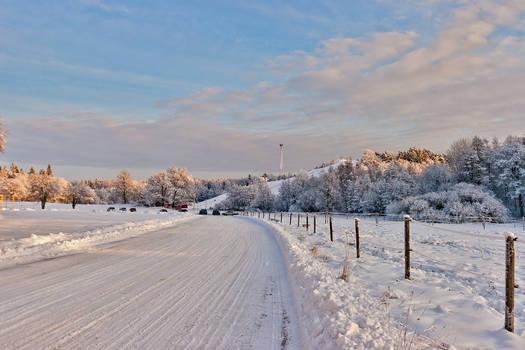 Winter landscape 1