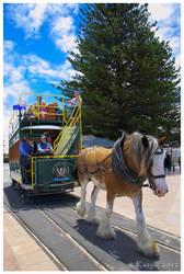 Horse Tram by Belldandy1