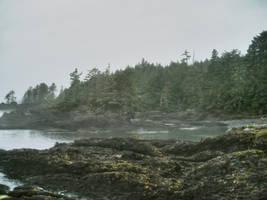 Wild Coast 2 by midnightstouchSTOCK