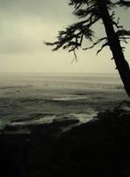 Wild Coast 3 by midnightstouchSTOCK