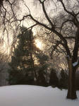 Winterpeg Sunrise