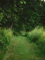 Summer Paths by midnightstouchSTOCK