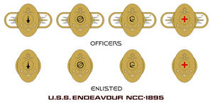 USS Endeavour NCC-1895 Insignia (2273-2329)