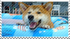 the summertime shibe by pulsebomb