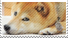 the depressed shibe by pulsebomb