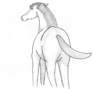 Horse 2 by SpellCaster-KaYa