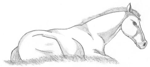Horse 3 by SpellCaster-KaYa