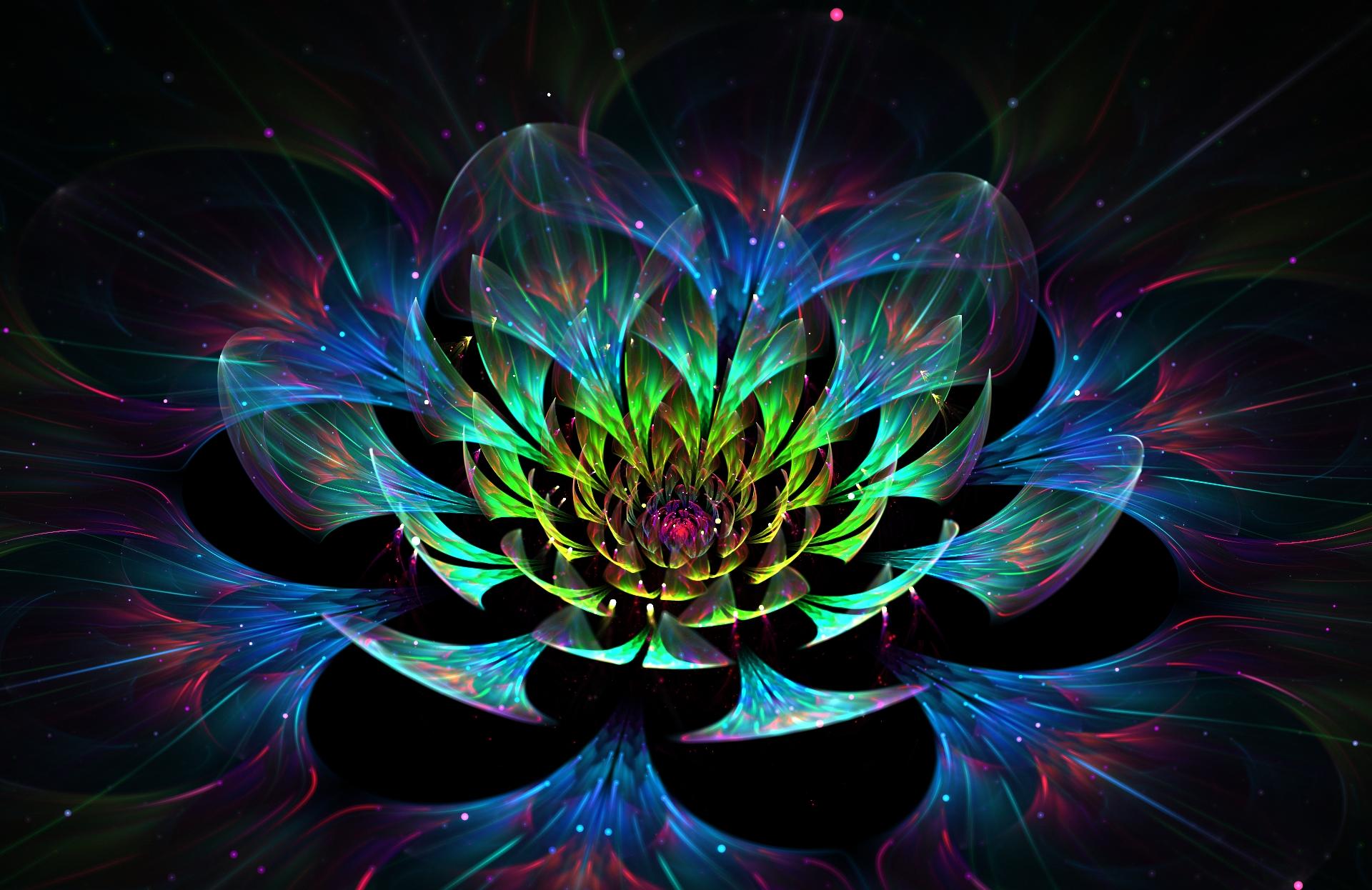 Oracle's flower by Dead-Levaithan