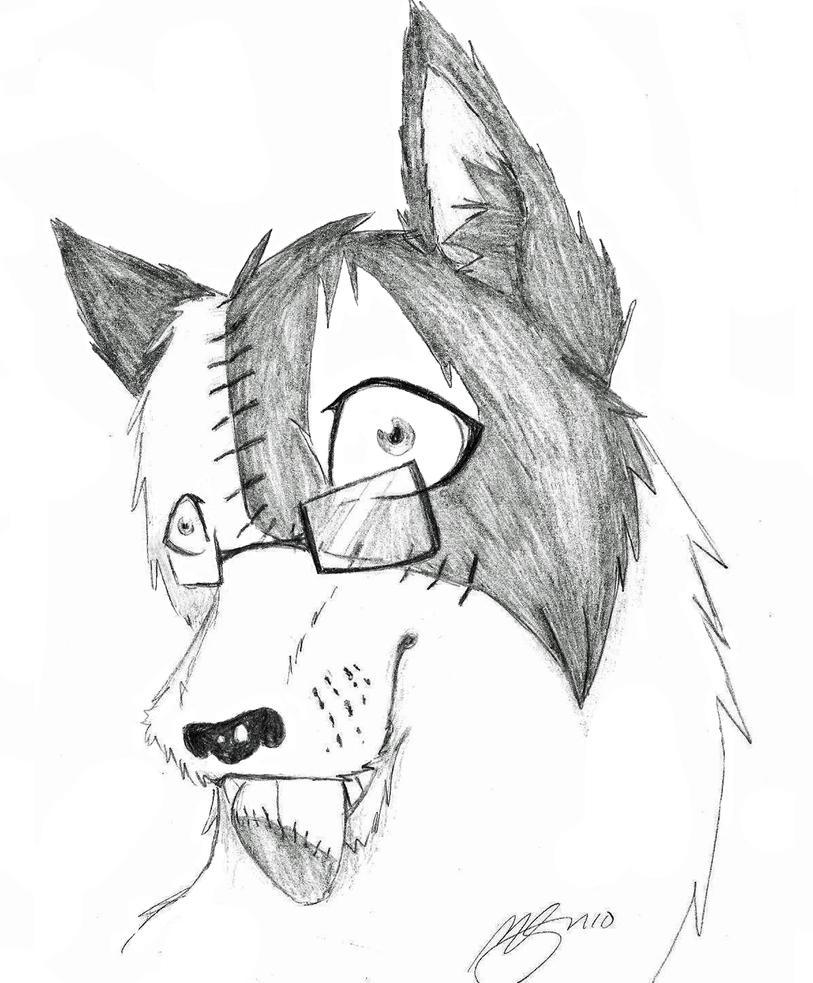 Zombie Wolf Drawing Zombie wolf id by zombiewolf6Zombie Wolf Drawing