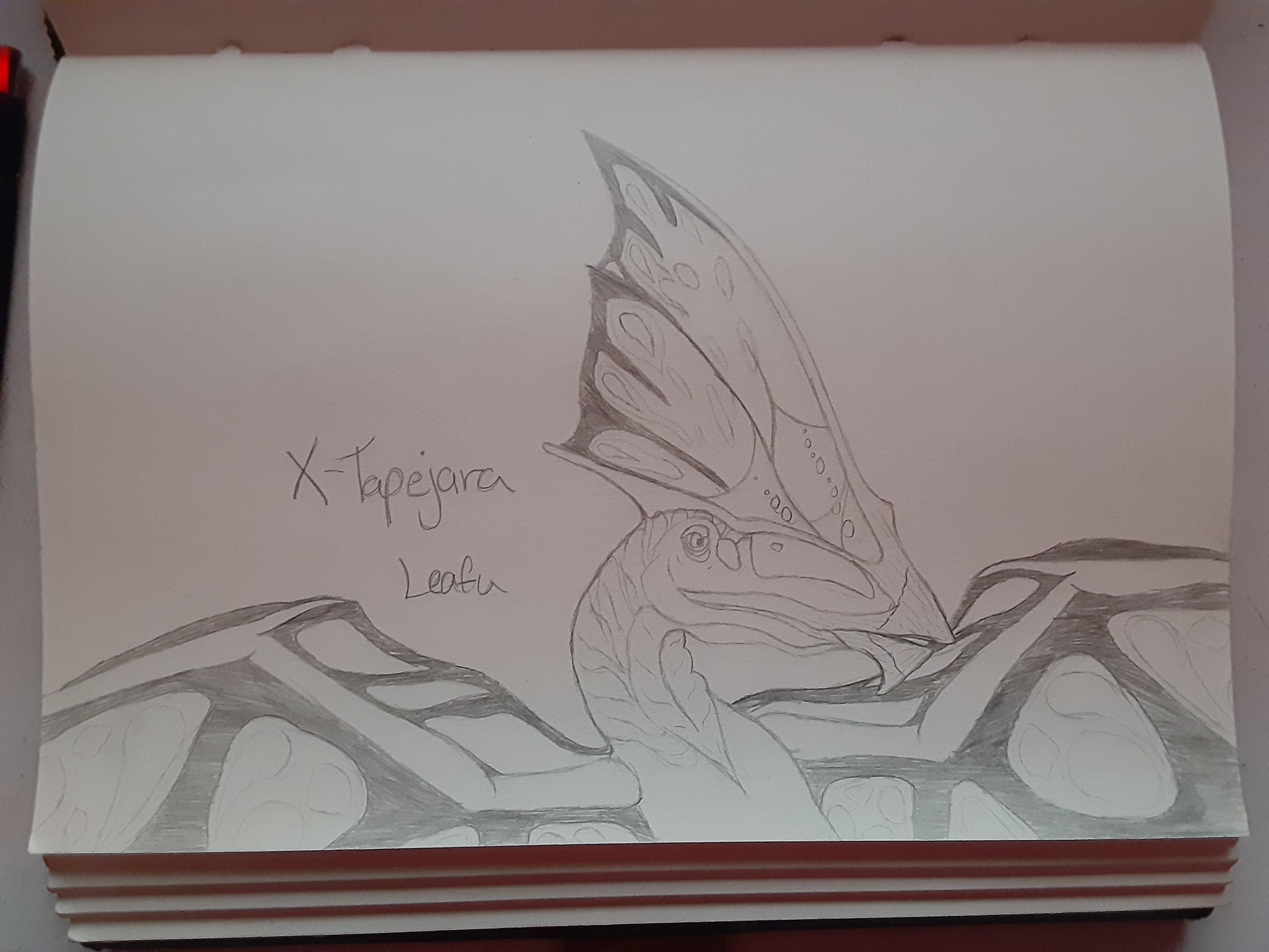 X Tapejara Ark Survival Evolved By Aerithedrgn On Deviantart Here's my ark tapejarra artwork for you to see! x tapejara ark survival evolved by