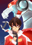 The Red Paladin