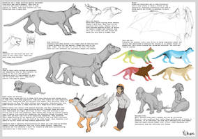 Dimidian Reference Sheet 2012 by tashcrow