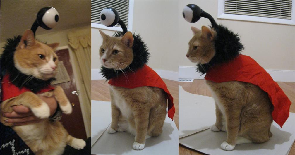 Nibbler Futurama Costume by Beetlecat