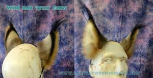 Lynx ears by Beetlecat