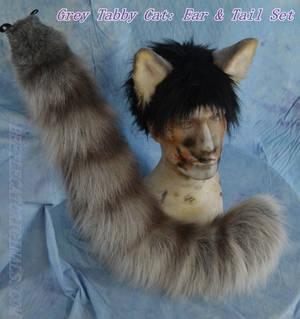 Grey Tabby Ear and Tail Set