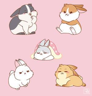 Bunny Set 1