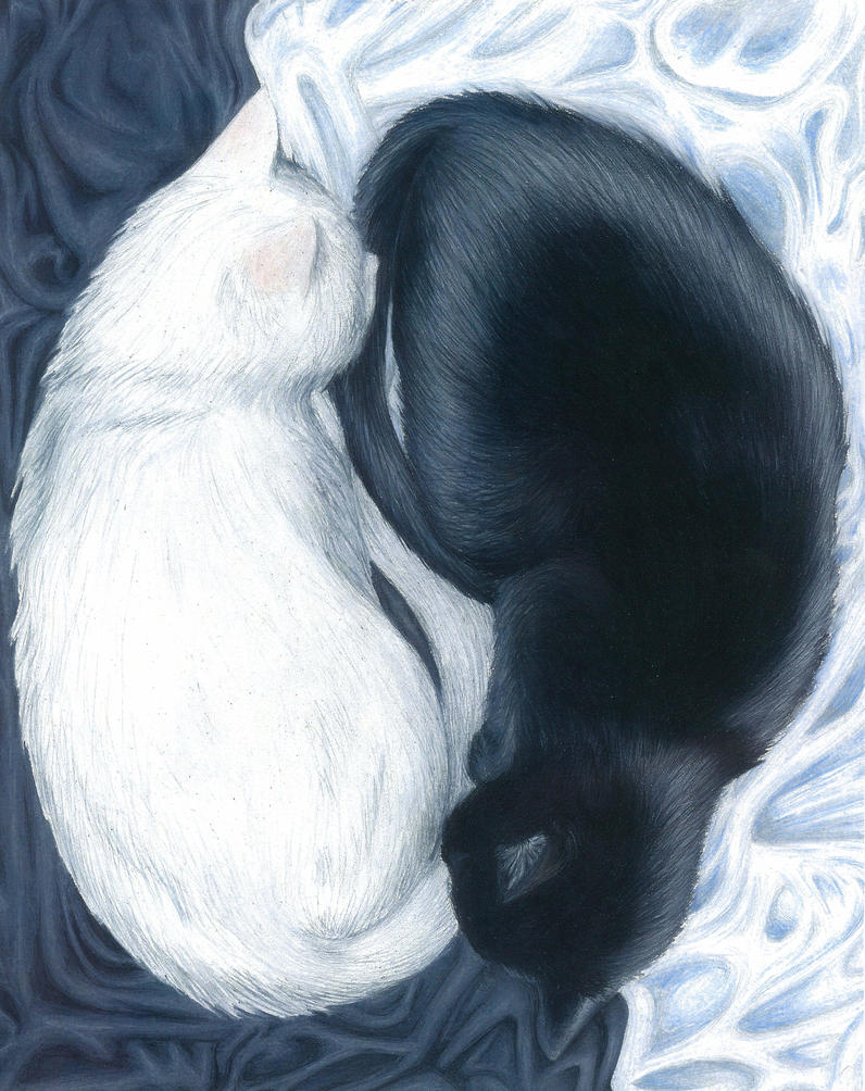 Yin and Yang by unlovedkittens