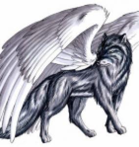 FenrigWW's Profile Picture